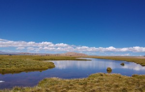 【盐井图片】滇藏甘青川20天环游自驾全记录