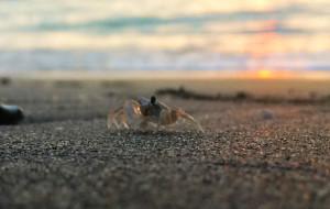 澳门景点-黑沙海滩