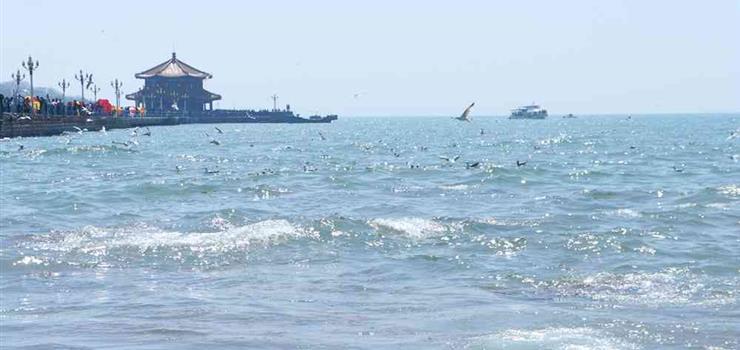 青岛海上环城地标游