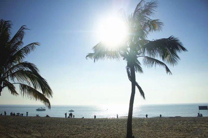 操场一圈都种满了椰子树,树条遮挡不住正午的热烈的阳光,既然不能遮阳