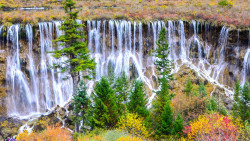 九寨沟景点-诺日朗瀑布(NuoRiLang Waterfall)
