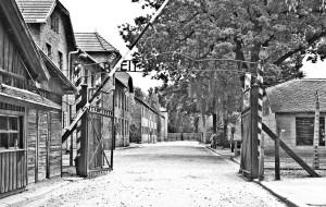 【波兰图片】黑色胶卷 Auschwitz Birkenau 奥斯维辛集中营 (波兰克拉科夫)