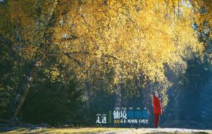【喀纳斯图片】嬉游新疆||九月末的喀纳斯到底什么样?
