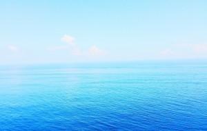【池上图片】#只是一闪,却是永远&台湾# 把无可奈何都写进风里。