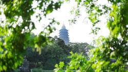 常州景点-红梅公园