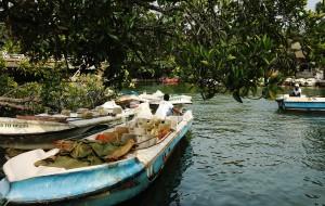 【本托塔图片】一月两洋三国四人自由航  锡兰大马爪哇赤道留足迹 斯里兰卡 第十一站 本托塔