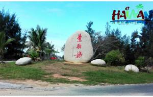 【儋州图片】16海南:牛屎和文豪