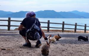 【高松市图片】濑户内海北半圈-仓敷美观、兔子岛、广岛、宫岛严岛、直岛全攻略--iPhone拍世界之9