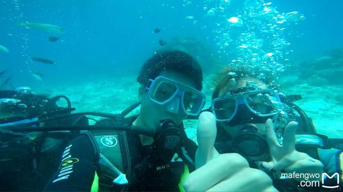 海底录像摄影高清素材