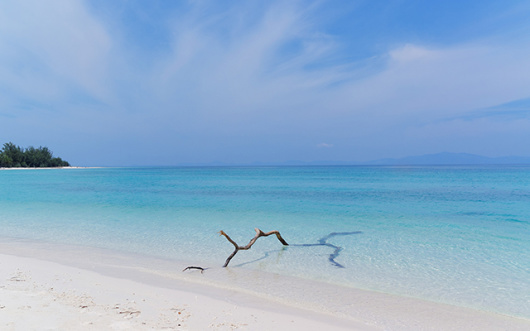 泰国普吉岛皇帝岛 珊瑚岛 快艇一日游 浮潜深潜 -中文