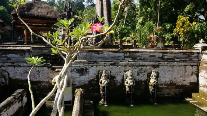 蓝色邀约蜜月圣地-巴厘岛(乌布,罗威纳,蓝梦岛,努沙杜瓦7日游)