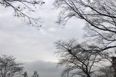 首尔南山塔,要下雨了☔️,天阴了☁️