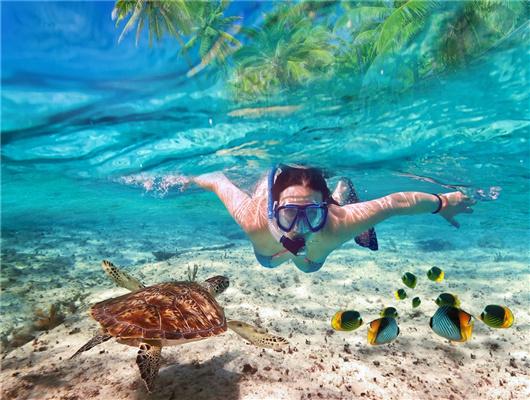 【出海首选】泰国芭提雅格兰岛快艇一日游 (浮潜,海底
