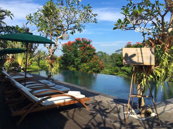 巴厘岛 游记   在乌布的酒店是我在巴厘岛住的最满意的一个地方!