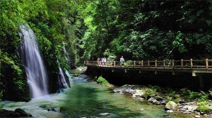 重慶黑山谷風景區門票