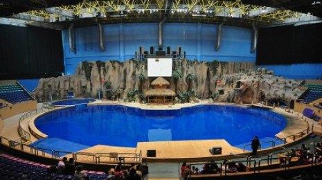 北京海洋馆电子门票 (北京动物园 北京海洋馆)
