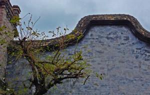 【福州图片】天香雅韵,灵秀榕城——福州风雅之旅