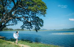 【斯里兰卡图片】#2016蜂首#海浪来自很远的地方,有茶香,去去也无妨