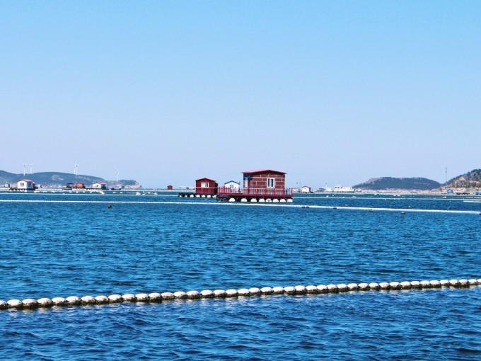 迎着海风去流浪——长岛,威海,青岛,青岛旅游攻略