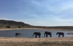 【好望角图片】我的蜜月游——南非