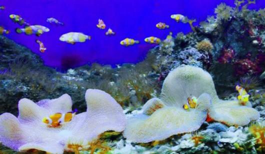 壁纸 海底 海底世界 海洋馆 水族馆 530_308