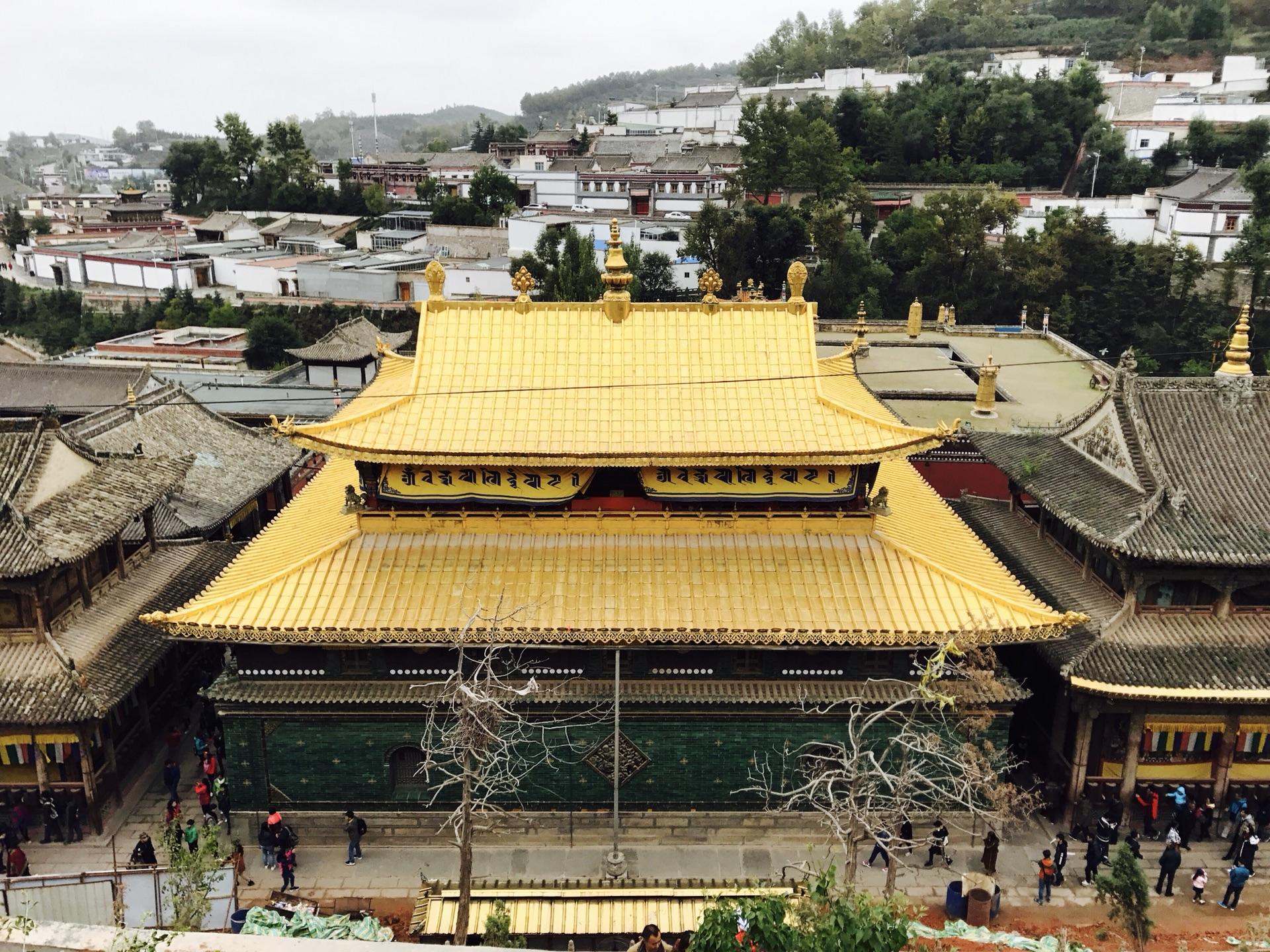 QingHai Taer Temple Tour